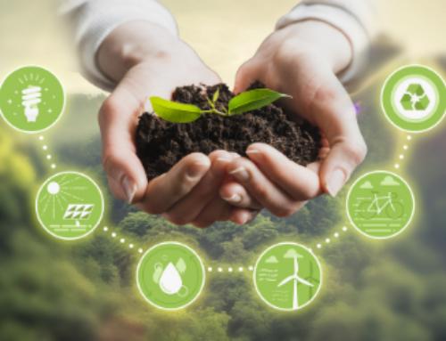 Te tudod mi az összefüggés a fenntarthatóság, az önkéntesség és a közösségszervezés között?